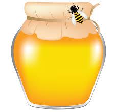 Мед от Палыча  Подсолнух (550гр)